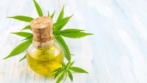 The Benefits Of Cbd Vs. Hemp Oil