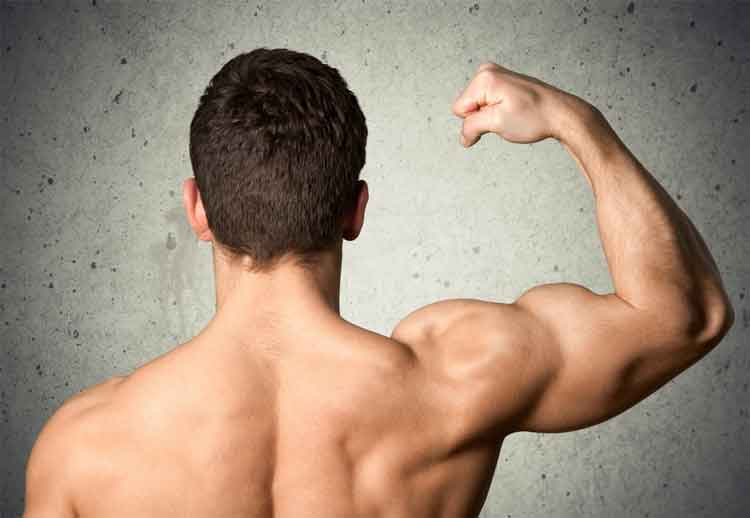 7 Tips for Stimulating Muscle Growth